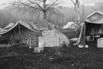 Greenham Festival Camp 1982
